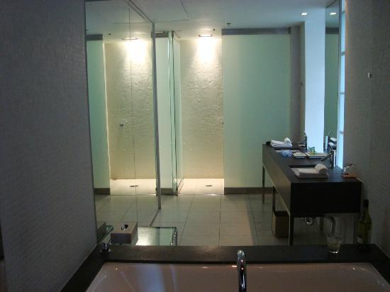 Establishment Hotel: walk in shower and wall-size mirror