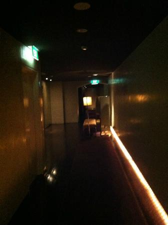 Establishment Hotel: elevator and hallway on my floor