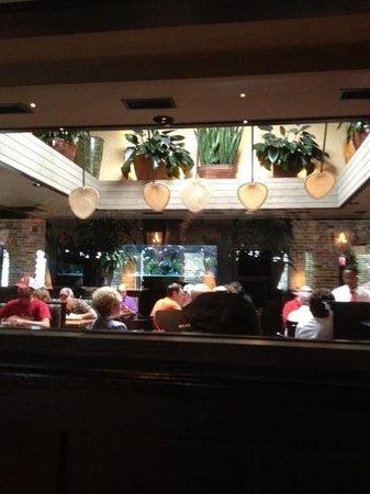 cheddar s picture of cheddar s scratch kitchen jonesboro rh tripadvisor com