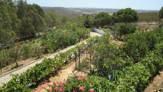 Monte da Bravura - Green Resort: The driveway and gardens