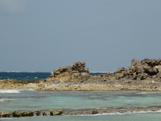 Cayo Francisqui: la parrte corallina di Francisqui
