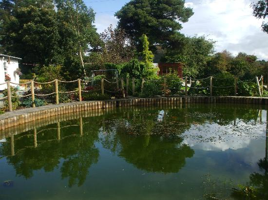 Beautiful Landscaped Gardens Ponds Picture Of Pine