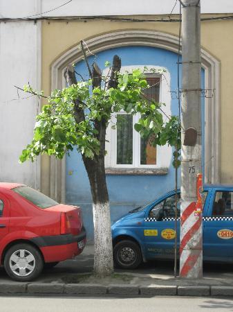 Cluj-Napoca, Rumania: In Calea Moţilor