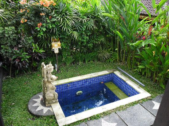 Tirta Ayu Hotel & Restaurant: The pool of the Raja Villa