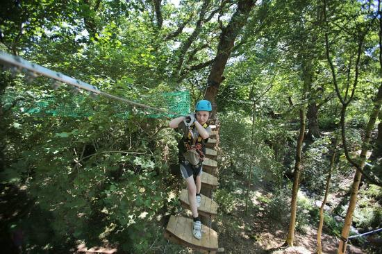 Killarney High Ropes Course : Tackling the wobbly bridge at Play At Height Killarney