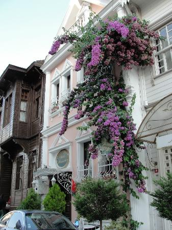 Romantic Hotel Istanbul: Neat and well kept in fantastic location