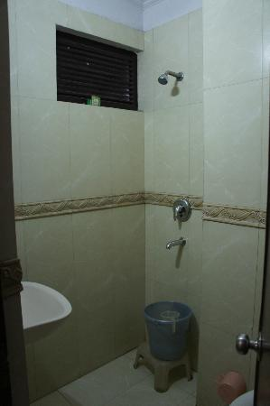 Hotel Amax Inn: Shower