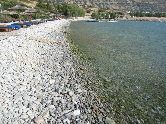 Blue Palace, a Luxury Collection Resort & Spa, Crete : Beach area.