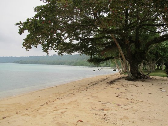 Velit bay beach