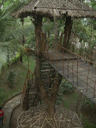 Greenwoods Resort: Tree house - dont miss the tea there
