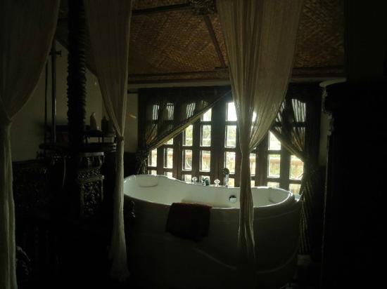 Terrasse des Elephants: Jacuzzi bath