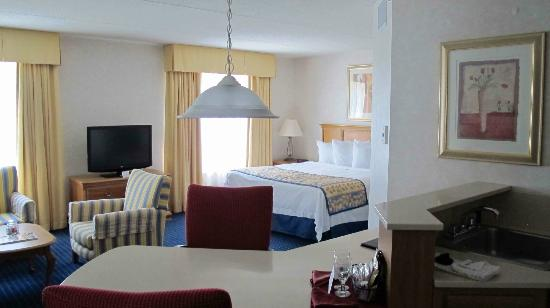 Residence Inn Rochester West/Greece : Studio 04