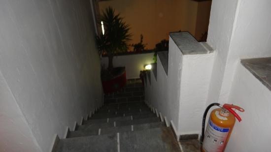 Studios Panos: scale deglistudios