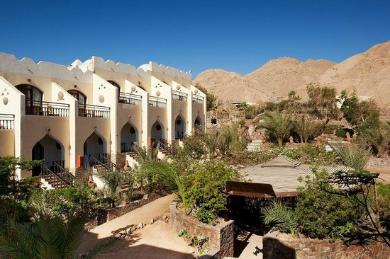 The Bedouin Moon Hotel: Mountain View AC Rooms
