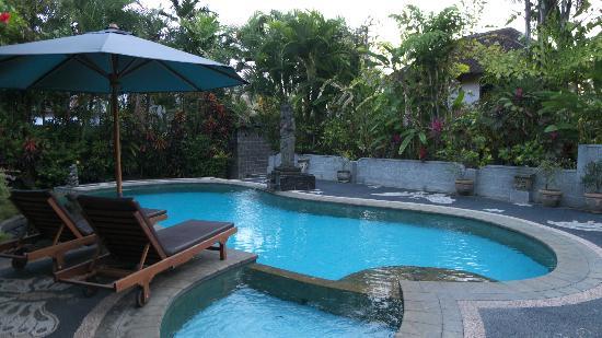 Bali Breeze Bungalows: パブリックプール