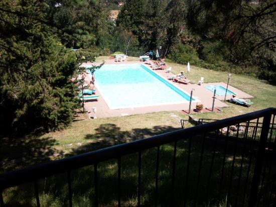 Hotel Michelangelo: piscina
