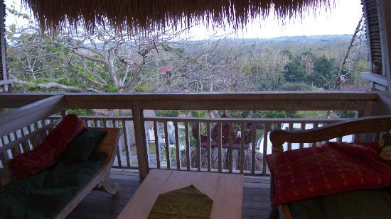Mandala Bali Bungalow: 部屋から