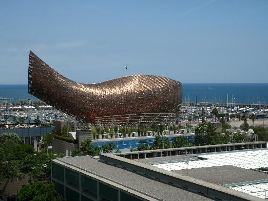 view from the rooftop pool   picture of pullman barcelona