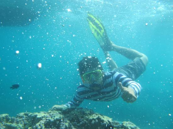 Karimunjawa, Indonesia: dive