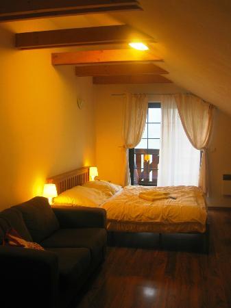 Rezort Apartmany Hrabovo: One room apartment in highest floor