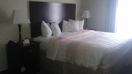 Best Western Plus Katy Inn & Suites: Room
