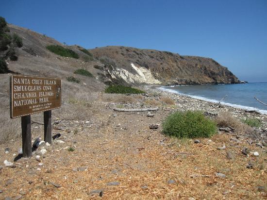 Santa Barbara Island Camping Review