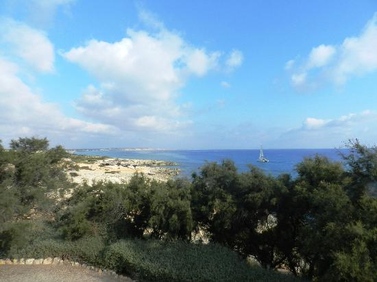 La Gaviota : Vistas desde la terraza