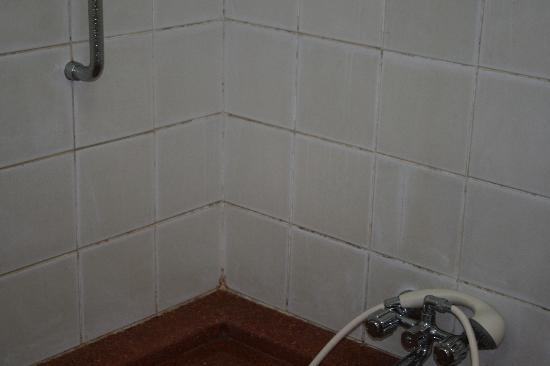 โรงแรมซาติว่า ซานูร์ คอทเทจส์: shower