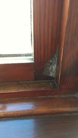 BEST WESTERN Glasgow Stepps Garfield House Hotel: mould growing from window