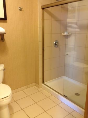 Homewood Suites by Hilton Bozeman: Bathroom--no tub, but large shower