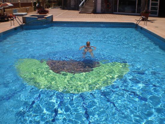 Morasol Atlántico: mi pareja dandose un banyito a la piscina, que según algunos estaba tan y tan sucia... ya lo vei