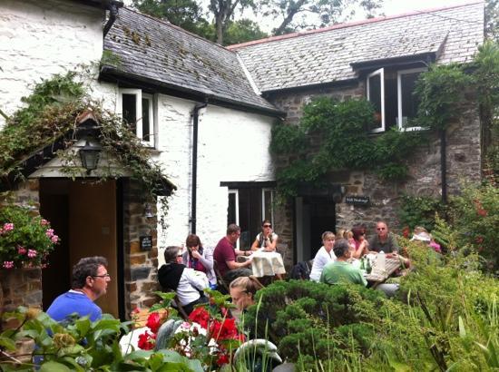 Docton Mill Gardens & Tea Rooms: Docton Mill Tea Rooms