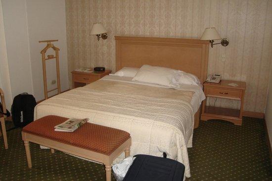 Hotel Parque 97 Suites: Room