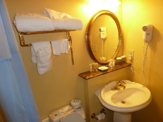 Newport Harbor Hotel & Marina: Bathroom, too small but clean