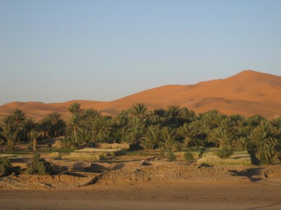 L'Auberge Oasis: vue sur les dunes