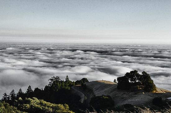 Mill Valley, Californie : Above the fog.