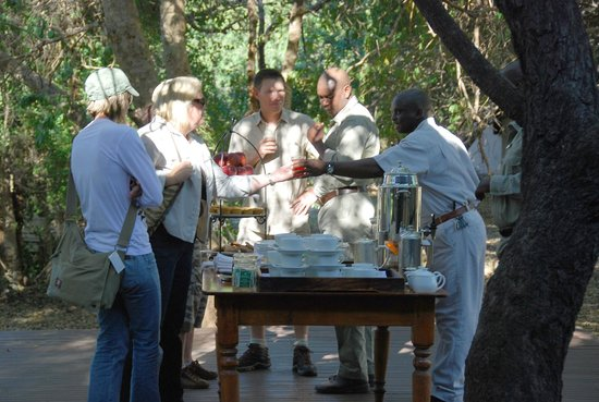 ‪‪andBeyond Ngala Safari Lodge‬: morning tea