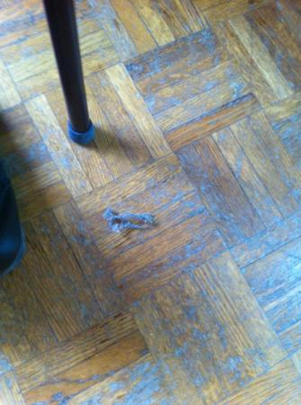 Hotel Peron: poussière partout