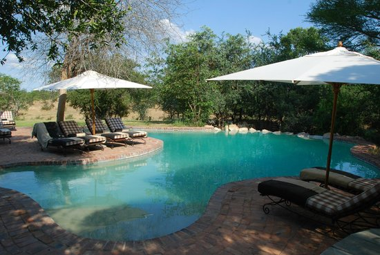 andBeyond Ngala Safari Lodge: swimming pool