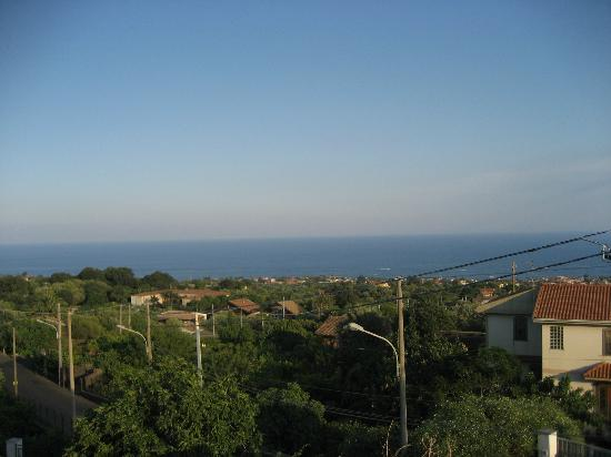 Parco degli Ulivi: vista dalla terrazza