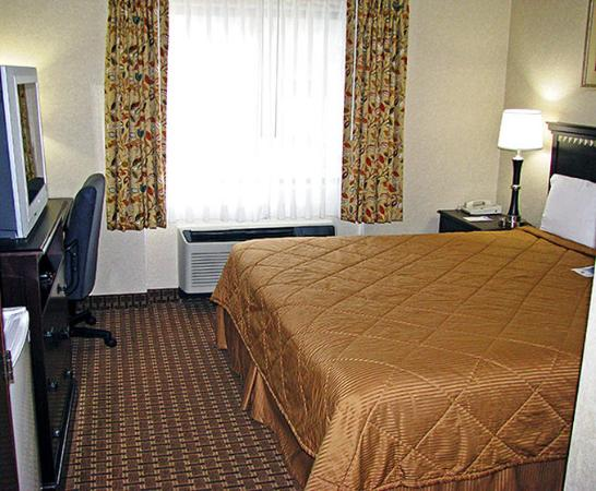 Motel 6 Westborough : MSingle