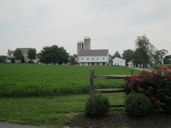 September Farm Cheese: A view of the beautiful cheese farm