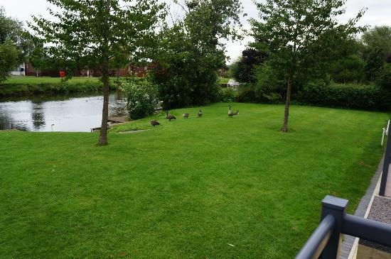 Riverside Caravan and Camping Park: View from No. 3