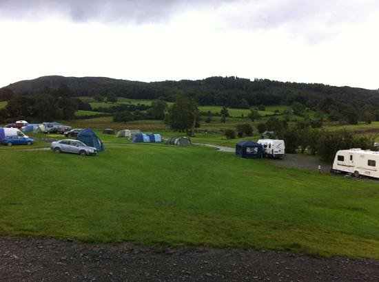Hawkshead Hall Campsite: sloping pitches