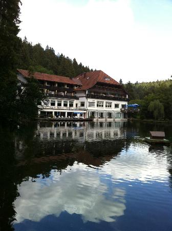 Hotel Langenwaldsee: View from the woodded area across lake