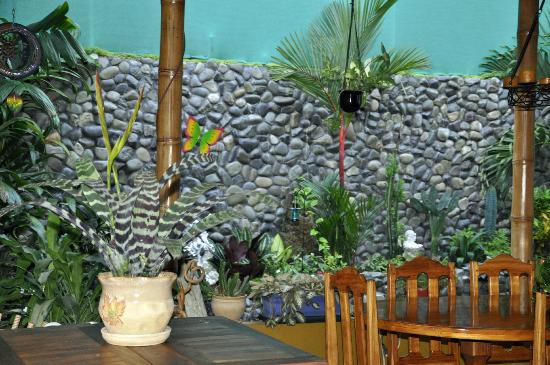 Coyaba Tropical Bed and Breakfast: Part of dining area and beautiful plants