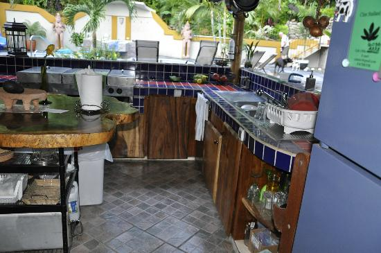 Coyaba Tropical Bed and Breakfast: Viw of part of the kitchen