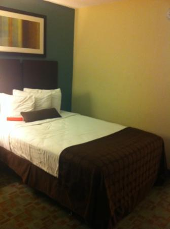 Ramada by Wyndham Tampa Airport Westshore: Chambre !