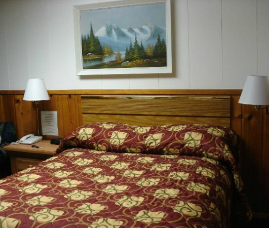 Saddle & Surrey Motel: queen bed