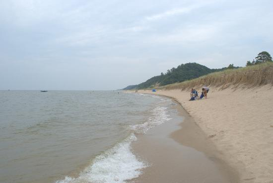 Saugatuck Dunes State Park: looking north